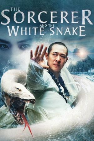 Best Movies Like The Sorcerer And The White Snake Bestsimilar