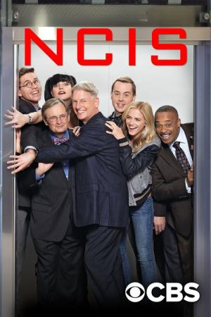 Best Movies and TV shows Like NCIS | BestSimilar