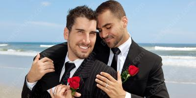 gay marriage movies