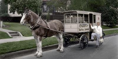 horse and wagon movies
