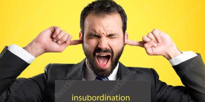 insubordination movies