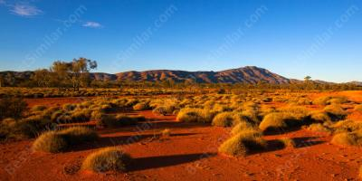 australian outback movies