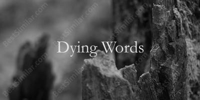 dying words movies