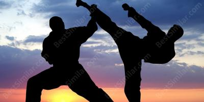 martial arts training movies