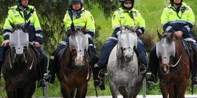 mounted police movies