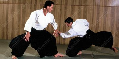 aikido movies